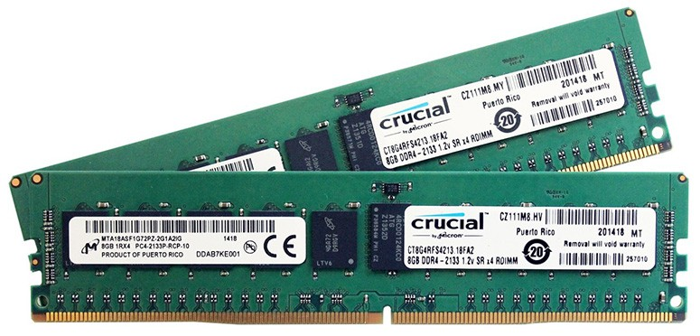 Crucial RAM Sticks